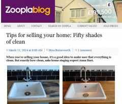 Anna Hart Zoopla 50 Shades of Clean